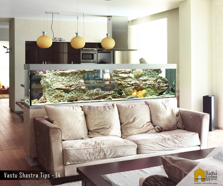 It is good to place the fish aquarium in the southeast corner in your living area, it brings peace and calmness in the house. #ShreeRadhaKrishnaGroup #Ahmedabad #VastuShastraTips #Positivity