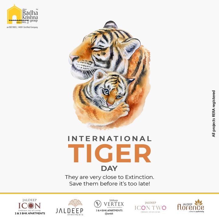 Radha Krishna Group,  InternationalTigerDay, InternationalTigerDay2021, TigerDay, SaveTheTiger, Tigers, ShreeRadhaKrishnaGroup, RadhaKrishnaGroup, SRKG, Ahmedabad, RealEstate