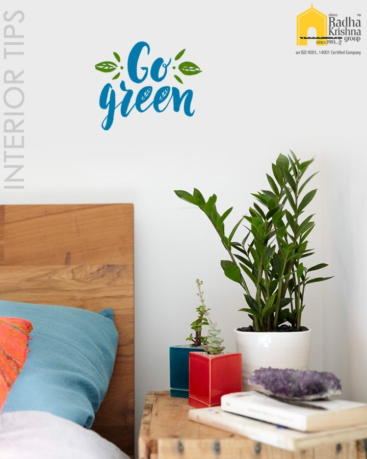 Add plants to your living space. Add them to every room, small or large, few or many. Plants are an inexpensive means to accessorizing your space and adding color and texture.  #InteriorTips #ShreeRadhaKrishnaGroup #Ahmedabad #RealEstate #LuxuryLiving