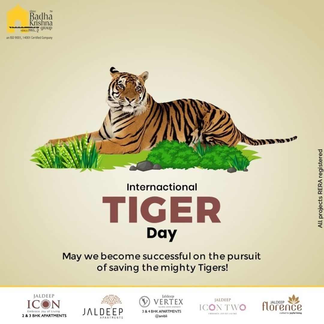 May we become successful on the pursuit of saving the mighty Tigers!  #InternationalTigerDay #InternationalTigerDay2020 #TigerDay #SaveTheTiger #Tigers #ShreeRadhaKrishnaGroup #Ahmedabad #RealEstate #SRKG